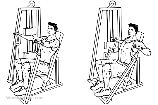 Lever Lifts Exercise : Hammer strength machine seated chest press workoutlabs