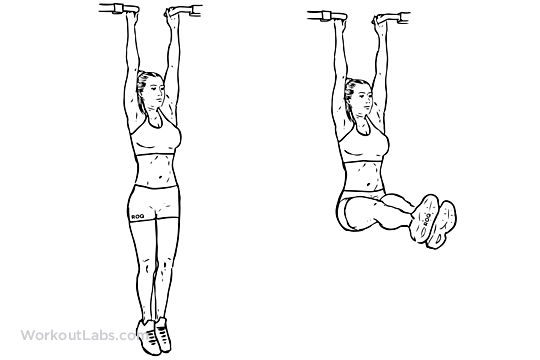 Hanging Leg Raise Illustrated Exercise Guide Workoutlabs