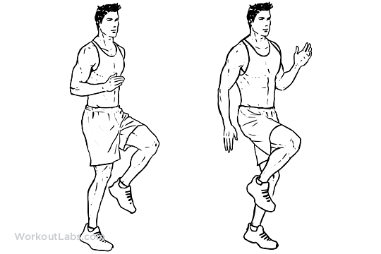 high knees    front knee lifts
