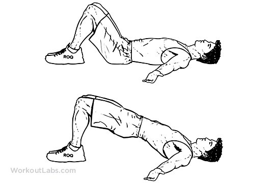 Hip Raise Butt Lift Bridge Illustrated Exercise