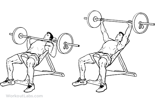 Incline Barbell Bench Chest Press Workoutlabs