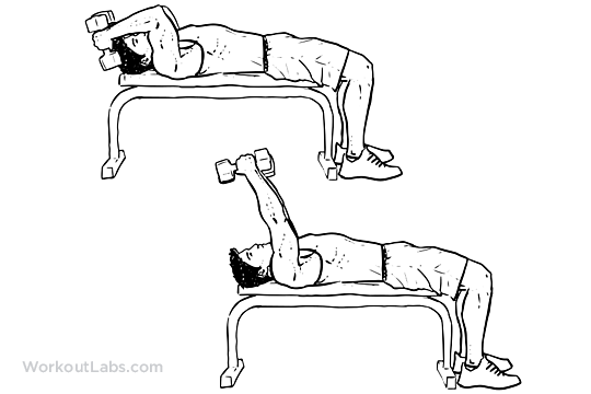 Lying Dumbbell Tricep Extension Illustrated Exercise