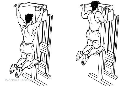 Machine Assisted Pull Ups Pullups Workoutlabs