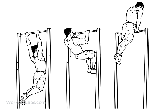 Ring Muscles Exercises