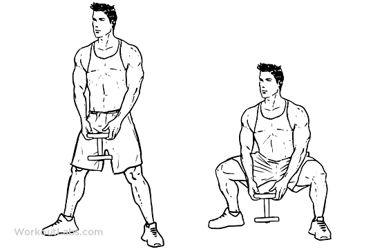 Pile Squat: Video Exercise Guide & Tips - Muscle & Strength