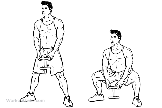 Sumo / Plié Dumbbell Squats | WorkoutLabs