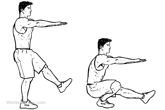 Pistol Single Leg Extended Arm Squats Illustrated