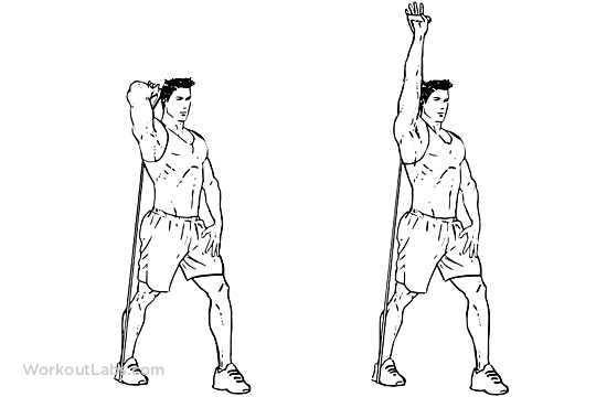 Resistance Band Tricep Overhead Extensions Workoutlabs
