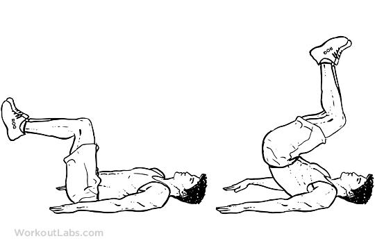 Reverse Crunch Workoutlabs