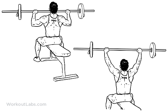 Seated Barbell Military Press | WorkoutLabs