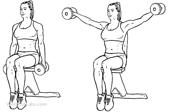 Seated Lateral Dumbbell Raise on Printable Chest Workout