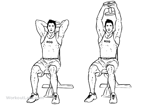 Seated Dumbbell Overhead Extension