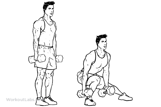 Dumbbell Side Lunges Lateral Lunges Workoutlabs