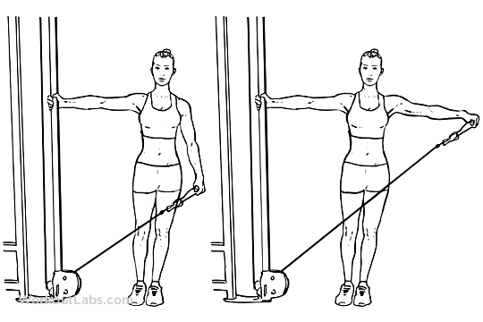 single arm cable lateral side raise workoutlabs