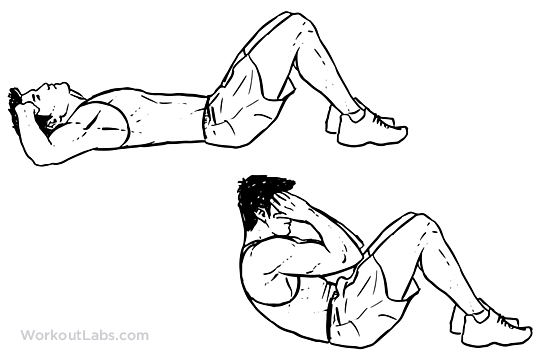Sit Ups Workoutlabs