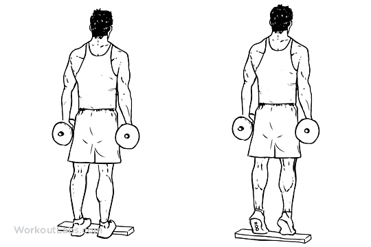 Standing Dumbbell Calf Raise on Inches To Feet And