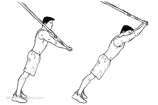 Standing TRX Suspension Strap Ab Rollout | WorkoutLabs
