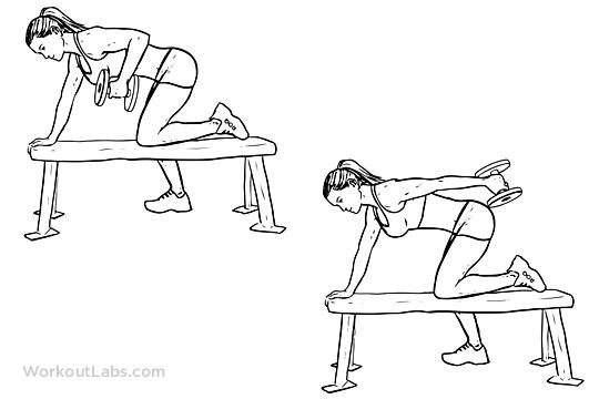 Tricep Dumbbell Kickback Illustrated Exercise Guide